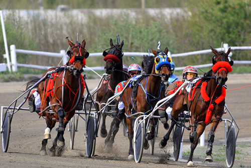 Goshen Historic Track and Harness Racing Museum