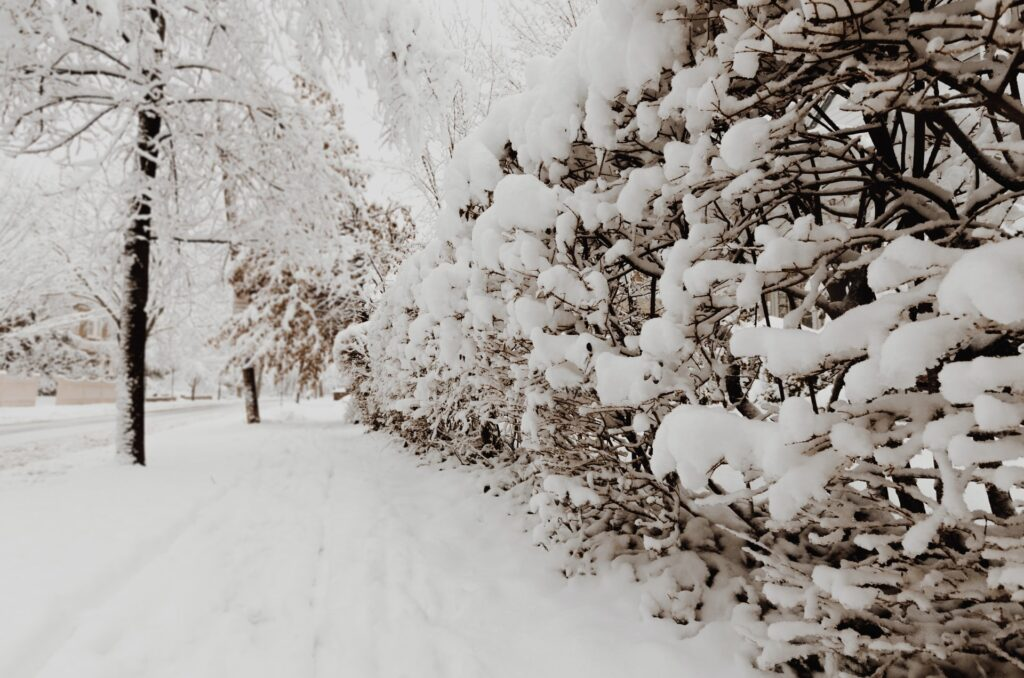 Benefits of living at a CCRC in the winter - Goshen, NY
